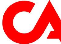 ICA_logo_rgb255